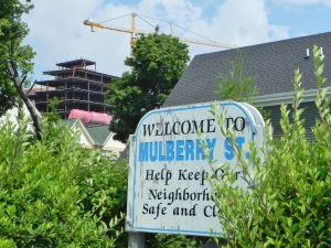 Welcome to Mulberry Street sign