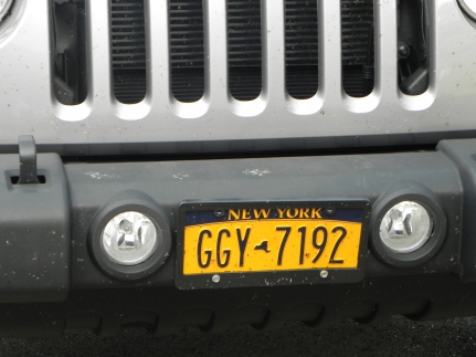 Wayland - Judge Parking Only - Front Plate