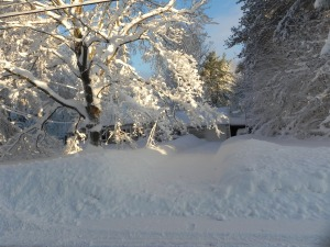 Our driveway after a day-and-a-half of shoveling 11-19-2014