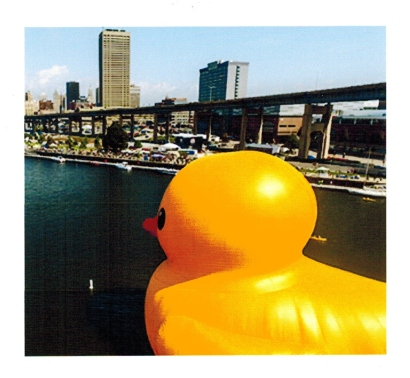 Rubber Duck at Canalside