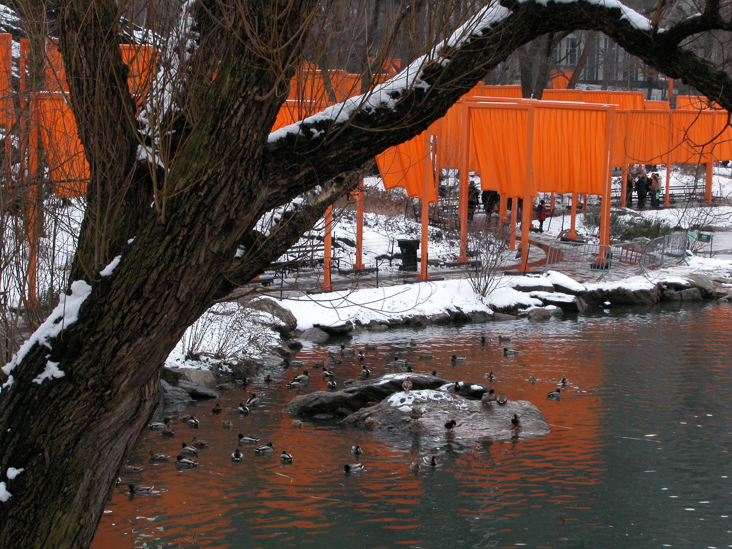 The Gates - Central Park 02-2005 031